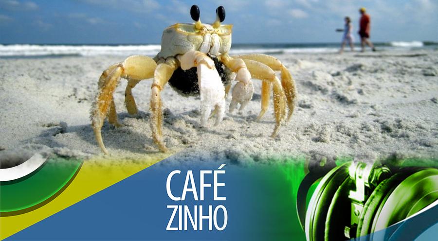 Cafezinho 300 – Mentalidade de caranguejo